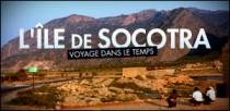 L'ILE DE SOCOTRA