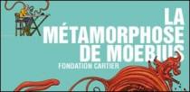 LA METAMORPHOSE DE MOEBIUS