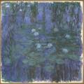 Nymphéas - L'abstraction américaine et le dernier Monet