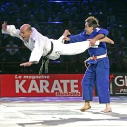 Festival des arts martiaux - Ju Jitsu Pariset