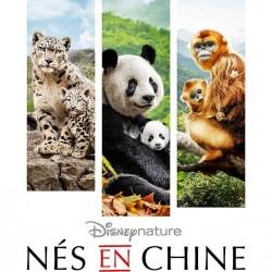 Nés en Chine - Affiche