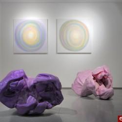 Sylvie Fleury, vue de l'exposition Sylvie Fleury, 2009