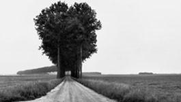 Cartier-Bresson aux Baux-de-Provence