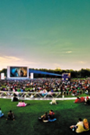 Cinéma en plein air 2017