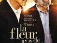 La Fleur de l&#039;ge - Affiche - La Fleur de l&#039;ge